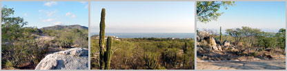 Buildable lot, $40,000. Pacific side, North of Cabo San Lucas